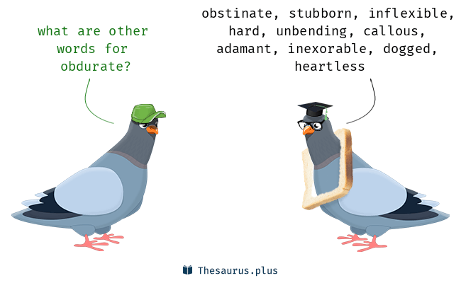 Synonyms for obdurate