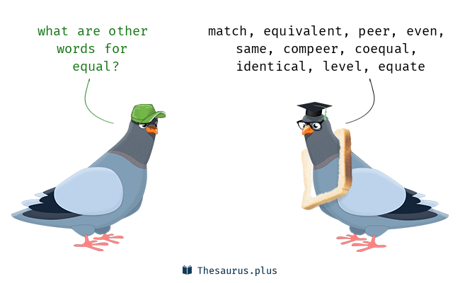 Synonyms for equal
