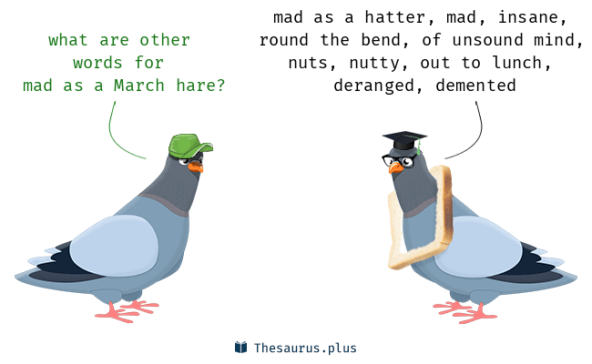 Synonyms for mad as a March hare
