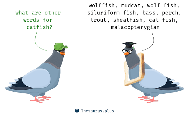 Words Catfish and Perch are semantically related or have similar meaning